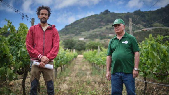 Un proyecto busca un impulso para la viticultura agroecológica