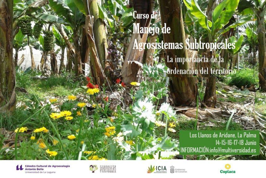"""Curso """"Manejo de agrosistemas subtropicales de frutales: Plátano, aguacate, mango, cítricos y papaya. La importancia de la ordenación del territorio"""""""