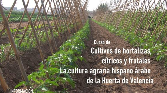 """Curso """"Manejo de hortalizas, frutales y jardines en Ambientes mediterráneos. La cultura agraria hispano-árabe"""""""